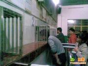 09年见到的最牛火车站售票窗